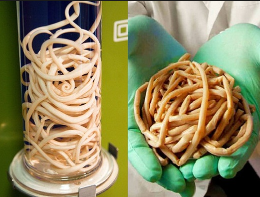 tapeworm exposed